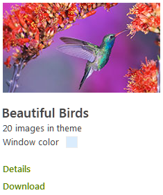 Beautiful Birds Windows 8 Theme