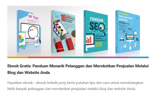 Ebook SEO dan WordPress Gratis Niagahoter